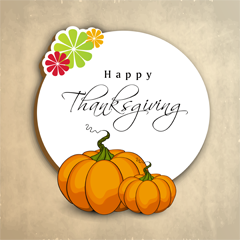 Keep your Thanksgiving Happy and Safe