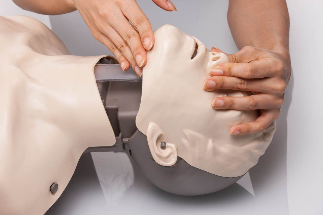 Brayden CPR Manikin Features